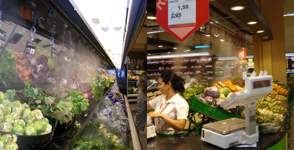 fresh-market-14